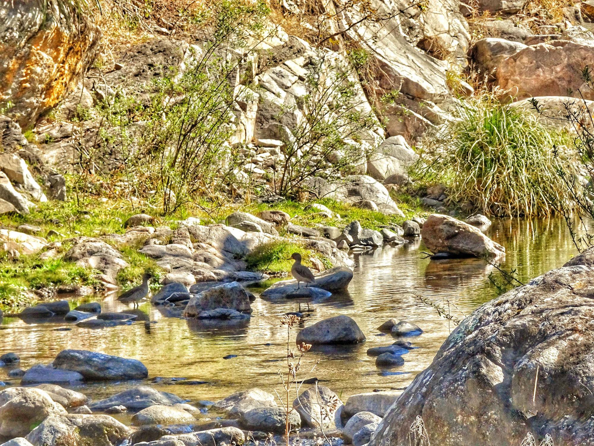 Senderos de la Reserva Los Quebrachitos- Unquillo