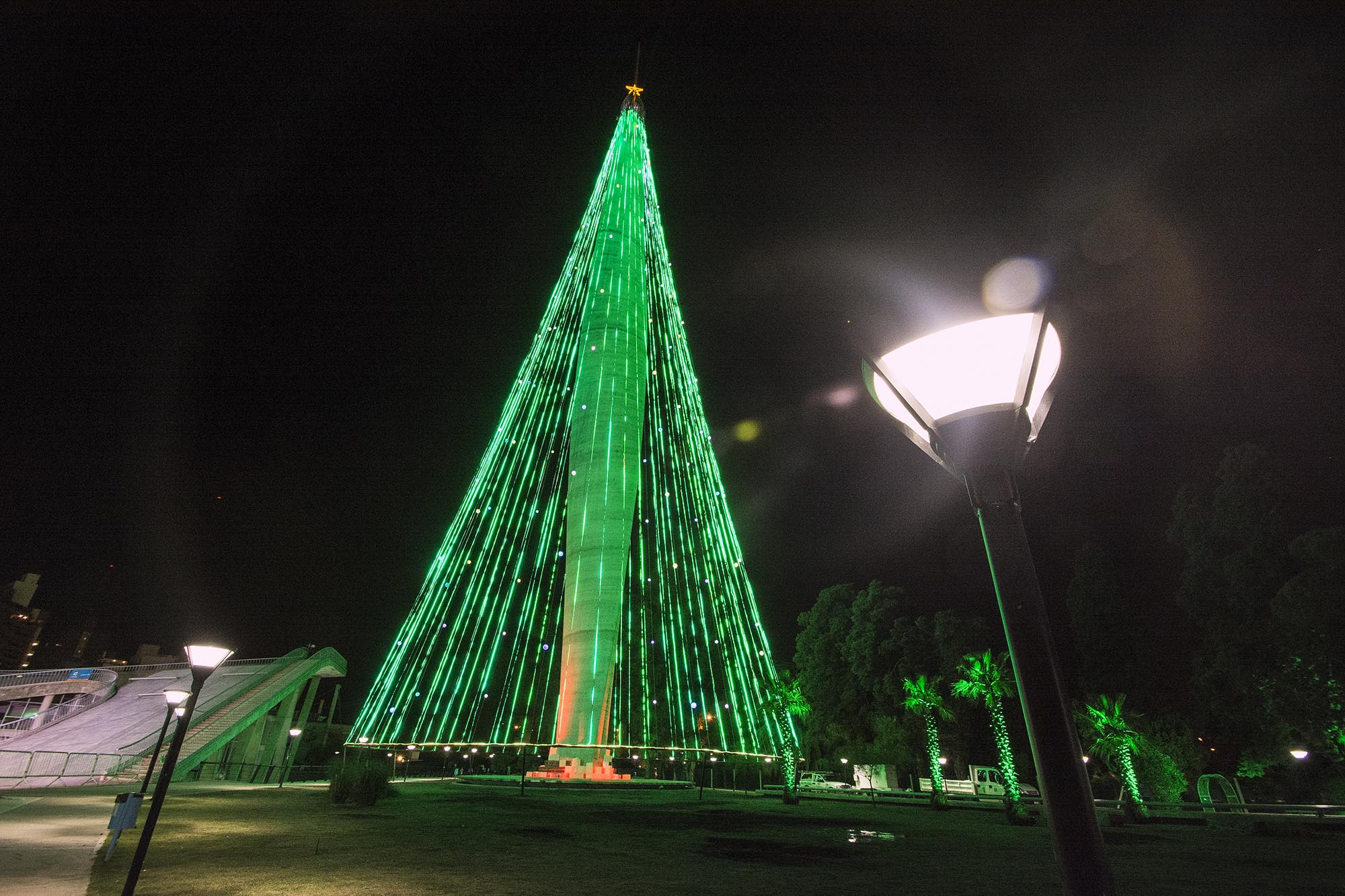 Córdoba encenderá su tradicional Árbol de Navidad