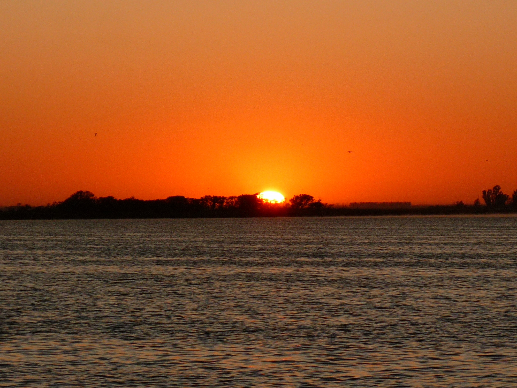 Córdoba, un fantástico destino para la pesca recreativa